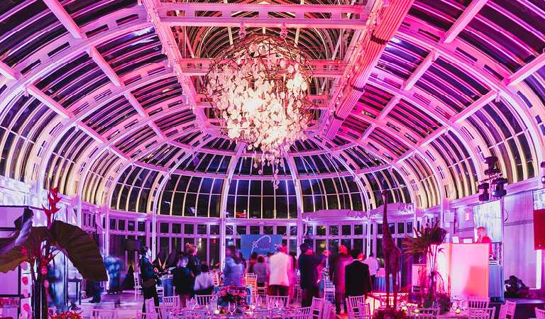 An evening event is held at The Palm House at Brooklyn Botanic Garden