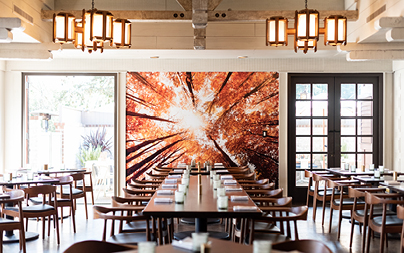 Maple Restaurant interior dining room