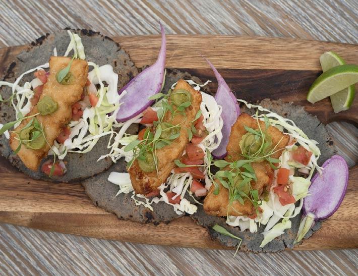 Fish Tacos, dining at Brooklyn Botanic Garden