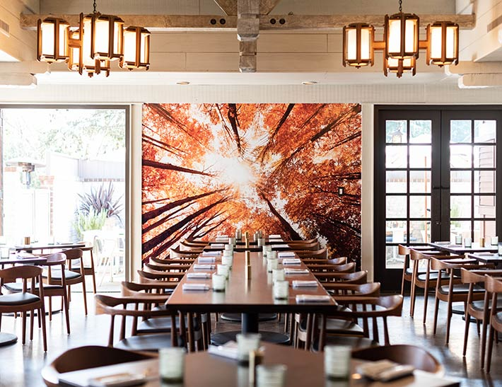 Maple Restaurant at Descanso Gardens Dining Area